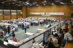 photo 003037 . Vantaa Tikkurila 16.10.2004 . 2004-10-16