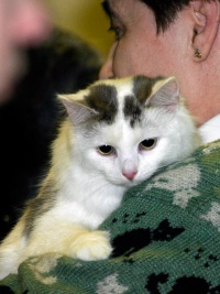 photo 006005 . 2005-02-19