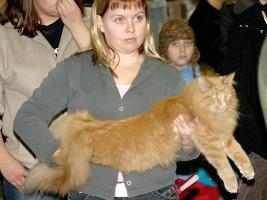 kuva 006031 . EC Lioneye's Bobo [NFO d] . 19.2.2005