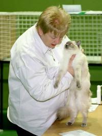 photo 010017 . [RAG] . 2005-04-23