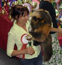 photo 013011 . GIC Birstein Celine d'Or [PER f 03] . 2005-07-30