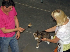 kuva 013085 . Deeamore Nordic Neonee [NFO n 09 23] . 30.7.2005