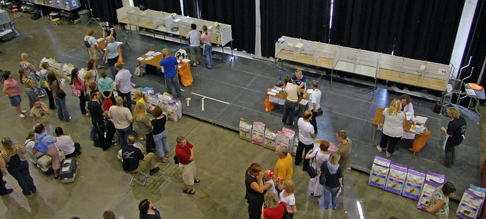 view over the show site, photo 016012, 2005-07-31