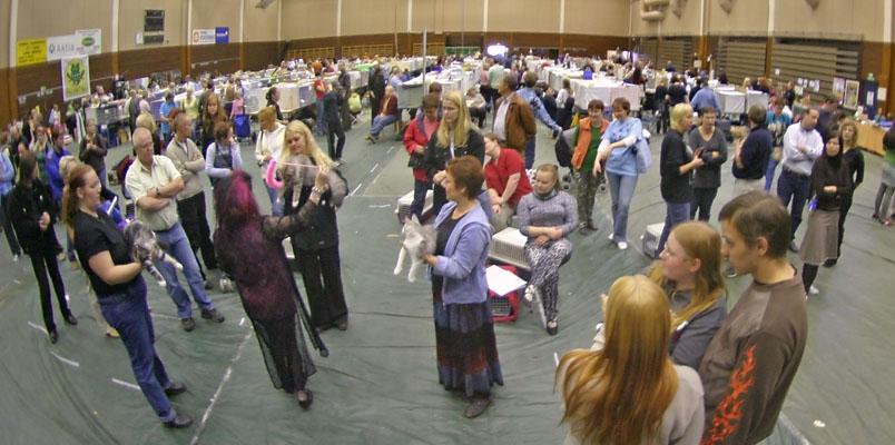 yleiskuvaa näyttelypaikalta, kuva 020156, 1.10.2005