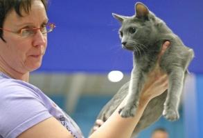 photo 026214 . Katzenhof Rubiini [RUS] . 2005-12-04