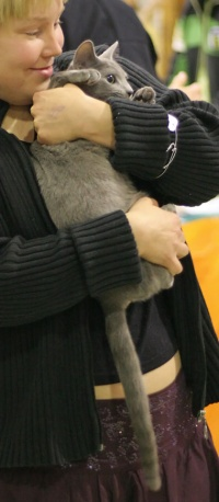 photo 030190 . [RUS] . 2006-01-07