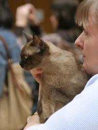 photo 036014 . Narinder Arwen [BUR n] . 2006-04-22