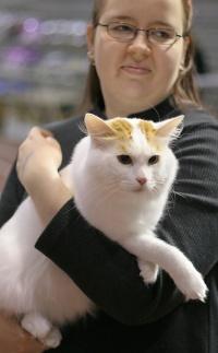 photo 037187 . GIC Ipekkedinin Birinci Bebek (Mikke) [TUV d 62] . 2006-05-21