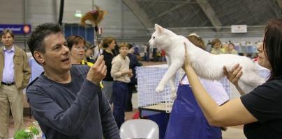 photo 037257 . Cat Napper's Svengali of Nazarlik (Svengi) [TUA w 63] . 2006-05-21