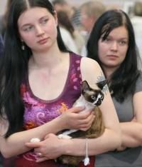 photo 039310 . Riiviön Zara [DRX n 09 33] . 2006-06-04