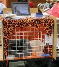 photo 047438 . the winner of Saturday's cage decoration contest . 2006-09-30