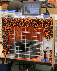 photo 047439 . the winner of Saturday's cage decoration contest . 2006-09-30