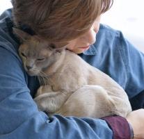 photo 061078 . Genuina Ihana Elämä [BUR c] . 2007-03-10