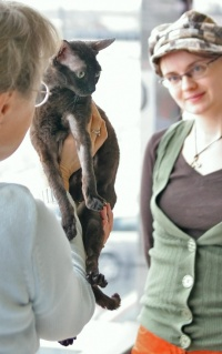 photo 061129 . CH Saxonys-Charlotta vom Batu (Lotti) [GRX b] . 2007-03-10