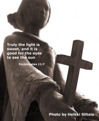 kuva 080001 . omistettu Jokelan 7.11.2007 uhrien muistolle . 10.11.2007