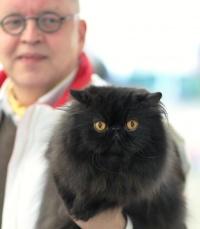 photo 091148 . 2008-04-26