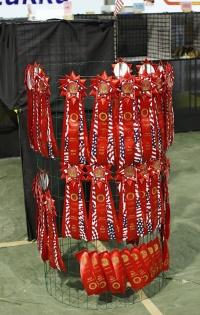 photo 093019 . high quality rosettes . 2008-05-03