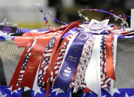 photo 094182 . high quality rosettes on a decorated American Star Sturdi cage . 2008-05-04