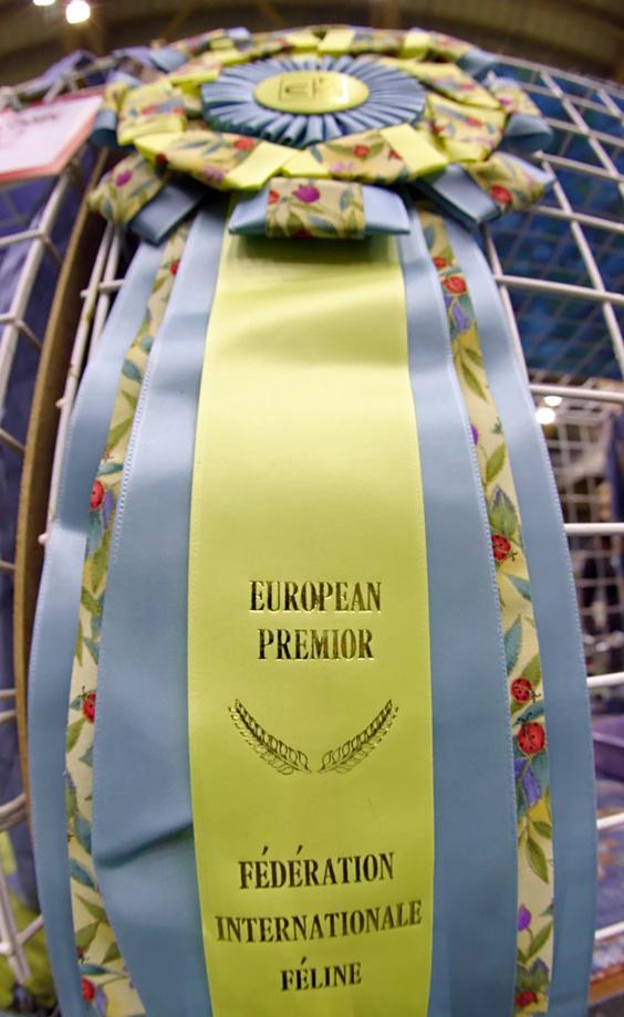 European Premior roselet, photo 095351, 2008-05-18