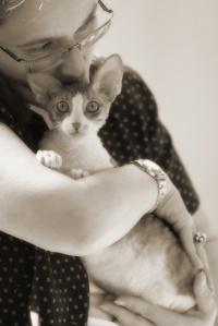 photo 099117 . Jip-Jap'n Miss Marple (Helmi) [CRX a 03 24] . 2008-08-02