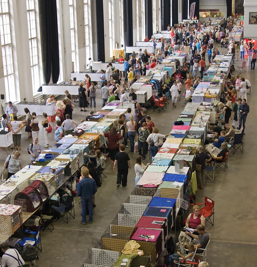 yleiskuvaa näyttelypaikalta, kuva 100081, 3.8.2008