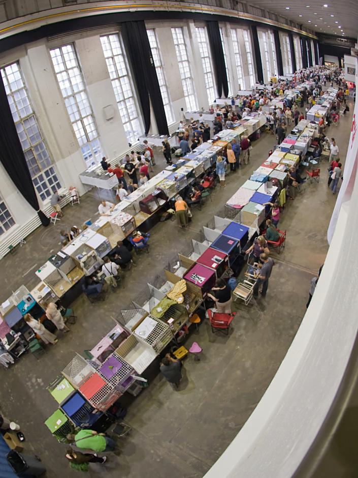 yleiskuvaa näyttelypaikalta, kuva 100148, 3.8.2008