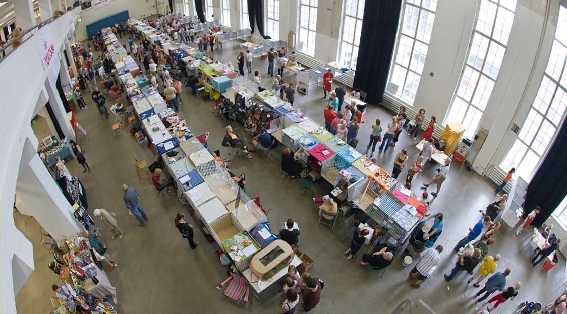 yleiskuvaa näyttelypaikalta, kuva 100168, 3.8.2008