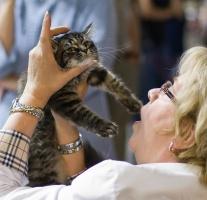 kuva 102155 . Sippan's Baby Jane [SIB f 22] . 24.8.2008