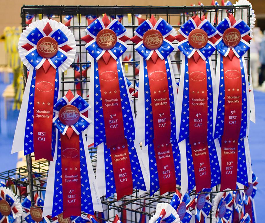 korkealaatuisia TICA-ruusukkeita, kuva 106001, 27.9.2008