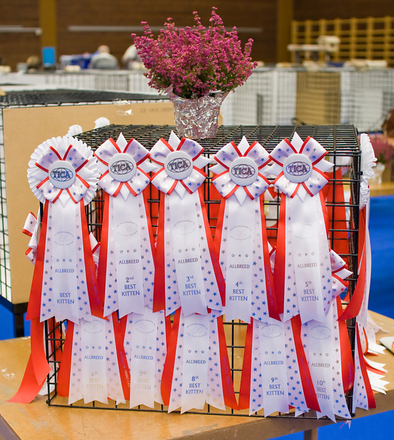 high quality TICA rosettes, photo 106004, 2008-09-27