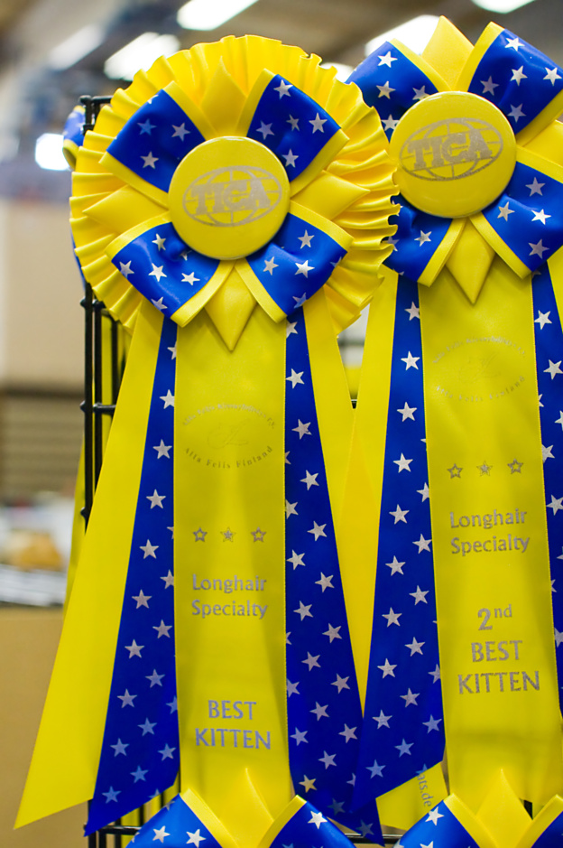 high quality TICA rosettes, photo 106012, 2008-09-27