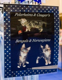 "photo 106216 . ""Polarheims & Cougar's"" . 2008-09-27"