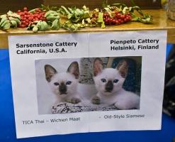 "photo 106217 . ""Sarsenstone & Pienpeto"" . 2008-09-27"