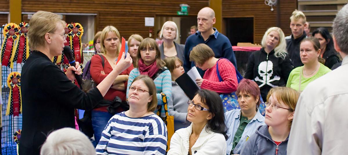 the judge explains the TICA show, photo 107001, 2008-09-28