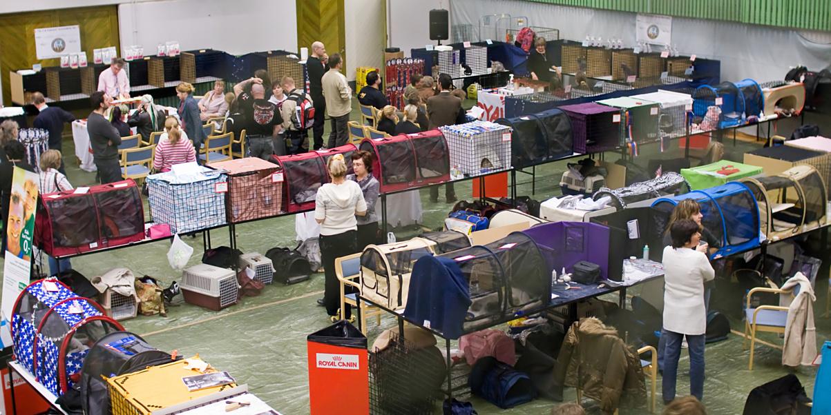 yleiskuvaa näyttelypaikalta, kuva 112061, 9.11.2008