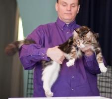 kuva 121006 . Boghole's Mr Joe Smith (Jasper) [MCO n 09 22] . 21.3.2009