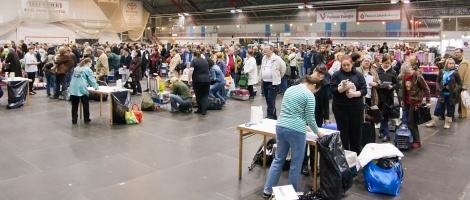 photo 125002 . the veterinary examination . 2009-04-25