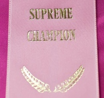 photo 128164 . The Pink Supreme Champion party: Cesmes Adile Aysun (Mimosa) [TUV d 62] . 2009-08-02