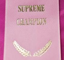 kuva 128164 . Pinkit Supreme Champion -juhlat: Cesmes Adile Aysun (Mimosa) [TUV d 62] . 2.8.2009