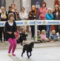 photo 131094 . dog dance . 2009-09-13