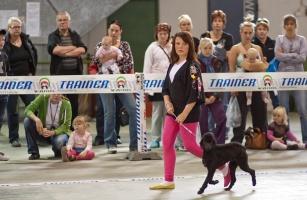 photo 131095 . dog dance . 2009-09-13
