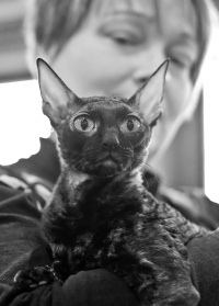 photo 134035 . IC Windseeker Rozy Black Pearl (Amelie) [CRX f] . 2009-10-10
