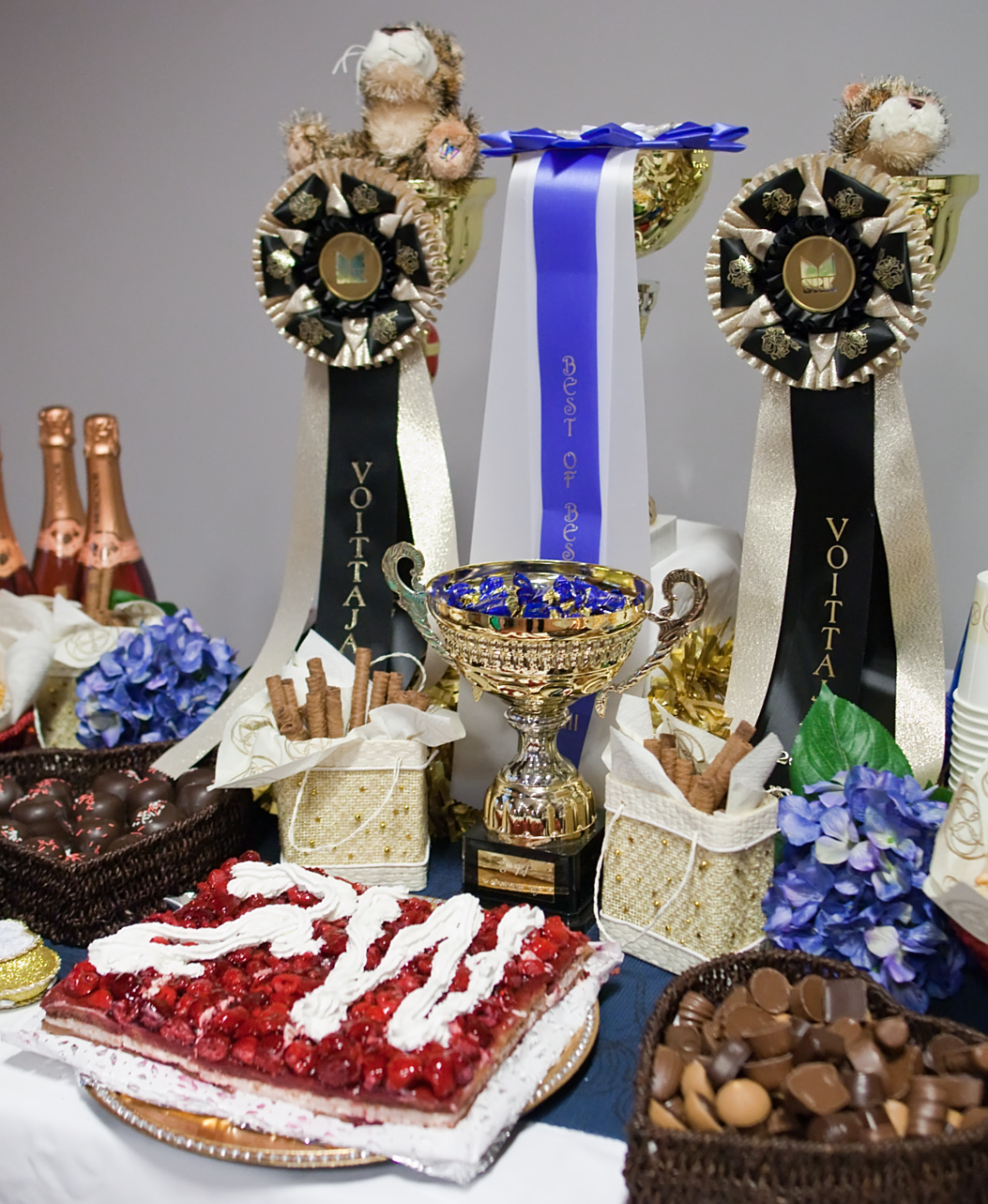 the OCI party, photo 139194, 2010-01-09