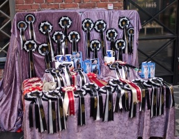 photo 139209 . rosettes . 2010-01-09