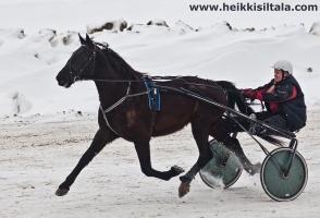 photo 141286 . Pegasos, the flying horse . 2010-03-06