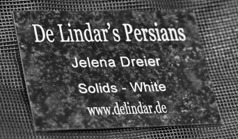 photo 143005 . De Lindar's . 2010-03-13