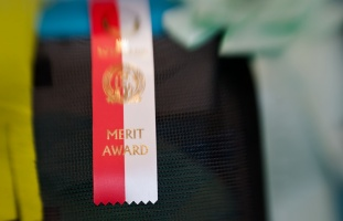 kuva 144113 . Merit Award . 14.3.2010