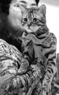 kuva 147247 . Oleander Luxury Boy [BEN n 24] . 4.4.2010