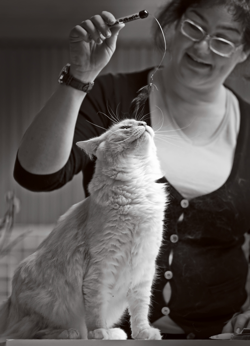 Cougar's Anatol Gogol (Wallu) [NFO ds 09 24], photo 147022, 2010-04-04