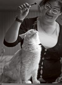 kuva 147022 . Cougar's Anatol Gogol (Wallu) [NFO ds 09 24] . 4.4.2010